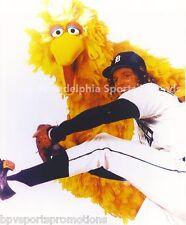 MARK FIDRYCH DETROIT TIGERS 8X10 PHOTO WITH BIG BIRD SESAME STREET **L@@K**