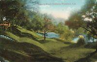 Postcard Busch Gardens Pasadena California