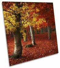 Canvas Red Landscape Art Prints