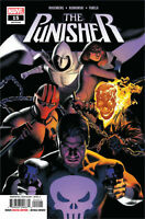 Punisher #15 Marvel COMICS  2019 COVER A 1ST PRINT MCU
