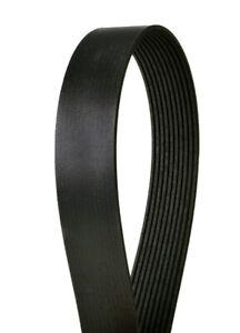 Serpentine Belt-Multi-V Continental Elite 4100510