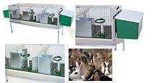 Conigliera completa di 2 nidi +mangiatoie e abbeveratoi per maschio e fattrici