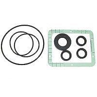 AR Oil Seal Kit 1383130