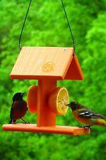 Audubon Naggo2 Going Green Oriole Bird Feeder