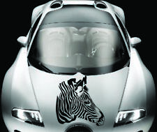 Zebra Head Animal Horse Vinyl Decal Car Hood Sticker Any Vehicle Auto Decor 1041