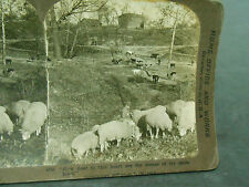ANTIQUE STEREOVIEW PHOTO HOW DEAR TO THIS HEART ARE THE SCENES OF MY CHILDHOOD