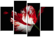 LARGE FLOWER CANVAS WALL PICTURE RED WHITE BLACK FLORAL SPLIT MULTI PANEL 100CM