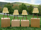 Original Eames Herman Miller Fiberglass Shell Chairs Walnut Dowel Base 1969