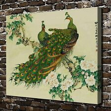 Chinese painting Peacock HD Print on Canvas Home Decor Wall Art Picture