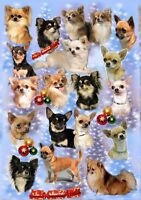 Chihuahua Dog Christmas Wrapping Paper By Starprint