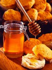 PHOTO FOOD SCONE BAKE HONEY SWEET GOLD POSTER ART PRINT PICTURE BB265A