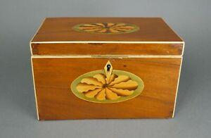 Fine Antique English Shell Inlaid Mahogany Tea Caddy Wood Box