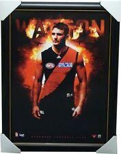 Jobe Watson Essendon Football Club Official Print Framed - Brownlow Medallist
