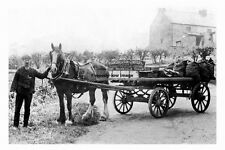 pt4523 - Wigan , Coal & Iron Horse & Cart , Lancashire - photo 6x4