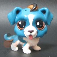 Littlest Pet Shop Collection LPS Figure Toys St. Bernard Blue Puppy Dog