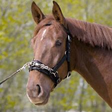 Kieffer Kappzaum, schwarz, Gr. Pony, Nylon