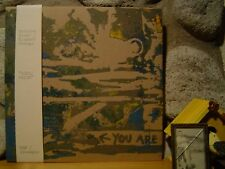 MATTHEW BOWER & RICHARD YOUNGS Site/Realm LP/1995 Skullflower/Total/A Band/NEW!