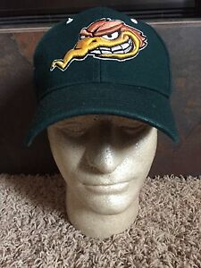 Zephyr Wood Peckers Fitted Trucker Hat Baseball Cap Lid A