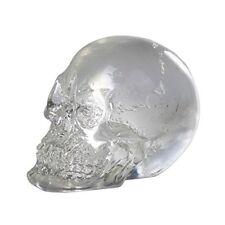 "1"" Mini Translucent Clear Skull Gothic HalloweenTabletop Decor 1 inch Tall"