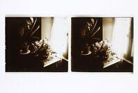 Fiori Morta Francia Foto Stereo L1n14 Placca Da Lente Vintage