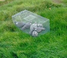 1 x PIGEON,DOVE,FERAL PIGEON CATCH ALIVE TRAP  UPTO 6 BIRDS + IN 1 HIT PERFECT.