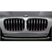 BMW BLACK PERFORMANCE KIDNEY GRILLES X5 AND X6