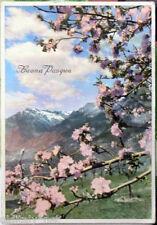 1957 BUONA PASQUA Paesaggio di Montagna con Albero Fiorito-ediz.A.L.M.A.