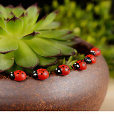 50Pcs Beetle Ladybug Fairy Figurine Miniature Dollhouse Decor Garden Ornament