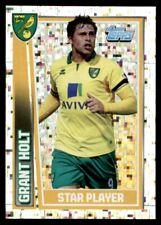 Topps Premier League 2013 - Grant Holt - Star Player Norwich City No. 159