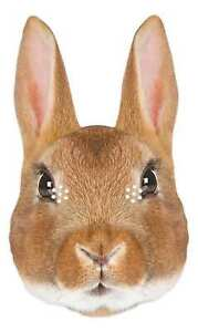 Rabbit Animal 2D Single Card Party Mask - Countryside Bunny Wildlife World Book