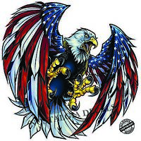 """Screaming American Bald Eagle Wings Decal Large 18"""" Decal Free Shipping"""