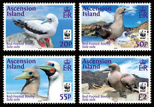 ascension 2016 WWF bird Red Footed Booby oiseaux vogel galinha 4v mnh **