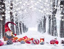 Winter Snow Trees Path Xmas Ornaments Backdrop 7x5ft Vinyl Photo Background LB