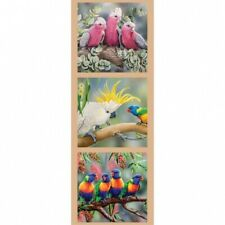 Patchwork Quilting Sewing Fabric GALAH COCKATOO LORIKEETS Panel 41x110cm New