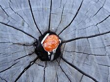 Empowering Jewelry Rings Alloy Silver-Tone Size 7.75 Orange Resin Sea Shell Boho