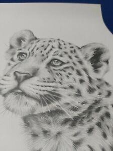 SARAH Stribbling - pencil sketch 2009 ERA - Never Framed - EARLIER PEICE!