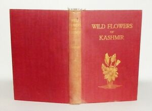1923 Coventry WILD FLOWERS OF KASHMIR First Series 51 COLOUR PLATES 1st Edn