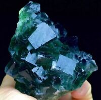 253g Translucent Deep Blue Green Cubic Fluorite Crystal Mineral Specimen Ad