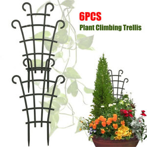 6PCS Green Plant Vines Climbing Trellis Garden Potted Supports Stand Holder AU