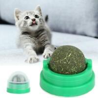 Haustier Katze Spielzeug Natur Catnip Kugel Menthol Aroma Essbare Katzen