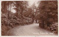 Wyming Brook Road, SHEFFIELD, Yorkshire RP