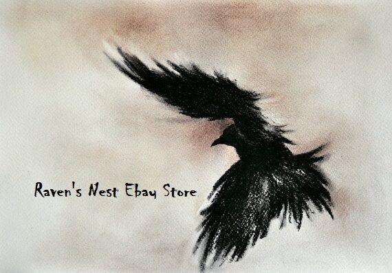 Raven's Ne$t