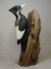 """Extinct"" Female Billed Woodpecker Orig Wood Carving"