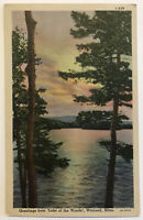Greetings from Lake of the Woods, Warroad, Minnesota MN Postcard - 1934