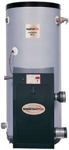 Rheem HE45-199 Advantage Plus Gas Commercial Water Heater NG/LP 45 Gal. 199K BTU
