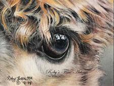 "Alpaca Eye Art Print ""Alpaca Eye"" Giclee 8"" x 10"" by Artist Roby Baer PSA"