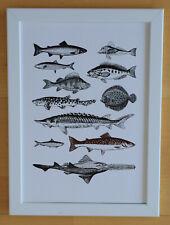 Fische - Druck schwarz & weiß  im weißen Holzrahmen - Wohnbild Bild Dekoration