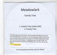 (GC934) Meadowlark, Family Tree - 2014 DJ CD