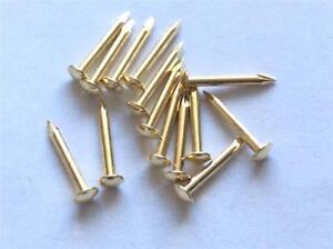 ESCUTCHEON BRASS PLATED PINS TACKS NAILS BRADS 15MM CRAFTS GOLD COLOUR