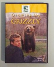 animal planet  GROWING UP GRIZZLY  narrated by brad pitt   DVD